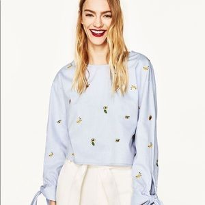 Zara Fruit Embroidered Long sleeves Top Medium